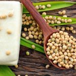should you eat soy during emnopause