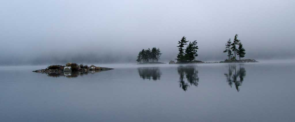 Nature-fog-Ian-Wagg-Unsplash.jpg